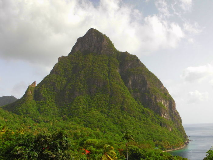 This picture is of the the Gros Piton in Soufriere, St.lucia. Caribbean Clear Sky Cliff Day Exploring Geology Landscape Mountain Mountain View Mountains Nature Non-urban Scene Physical Geography Rock Rock - Object Rock Formation Rock Formation Nature's Diversities Rocky Mountains Scenics Seeing The Sights Tranquil Scene Landscapes With WhiteWall Volcano Voyage