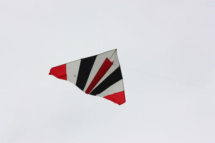 Kite Kite Festival Flying Cerf Volant