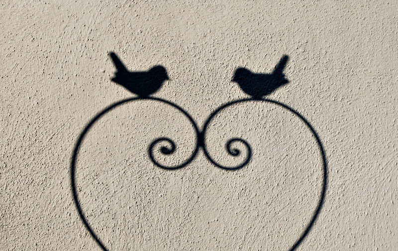 Affection Bond Of Love Close-up Day Fondness Grey Background Heart Shape High Angle View Love No People Outdoors Shadow Shadow On The Wall Sunlight Sympathy Tenderness Togetherness Two Birds