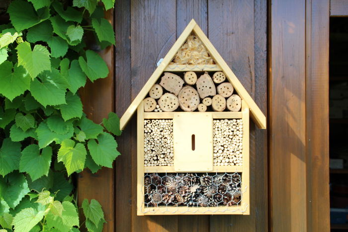 Hotel for insects Bees Design Garden Hanging Hotel Hotel Insects Insects  Larvae No People Stack Upbringing Wild Bees Wood Wood - Material Wooden