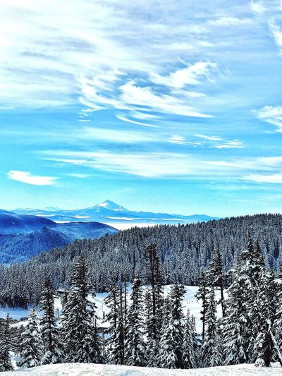 Bluebird day a few weeks ago. Snow Winter Cold Temperature Beauty In Nature Cloud - Sky Mountain Outdoors Oregonexplored Snowboarding ❤ Snow ❄ Somuchfun Taking Photos Enjoying Life Iphone7plusphoto Oregonlife Lifestyles