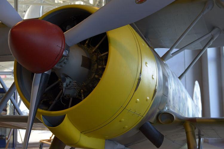 Close-up of yellow balloons