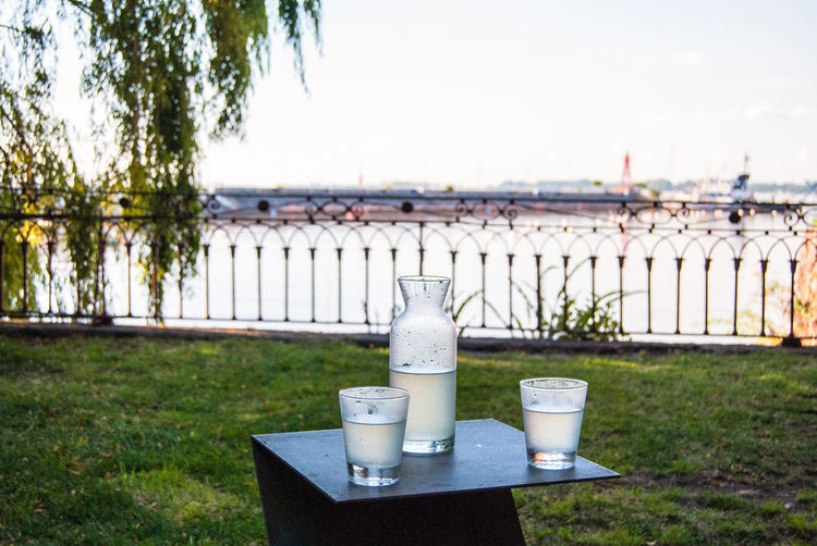 A bottle and two glasses of lemonade with a beautiful view of the river. Nature Day Water Plant No People Outdoors Food And Drink Drink Grass Refreshment Bottle Table Lemonade Refreshment Chilling Resting Relax Two Glasses Beautiful View Peaceful Horizontal Copy Space River