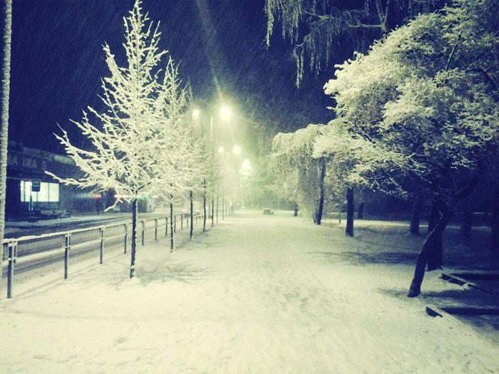 слава богу, по таким дорогам - дома! Cozy Winter