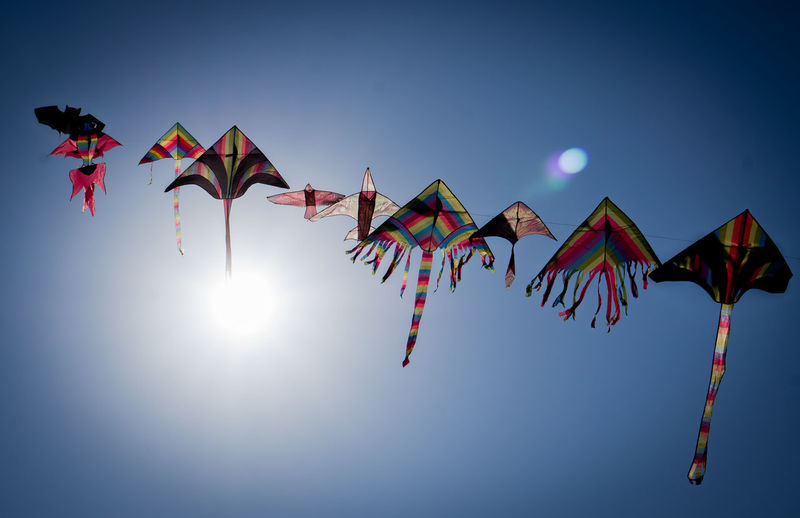 kites Blue Clear Sky Flying Kite Kite - Toy Lens Flare Low Angle View Mid-air Multi Colored No People Sky Sunlight