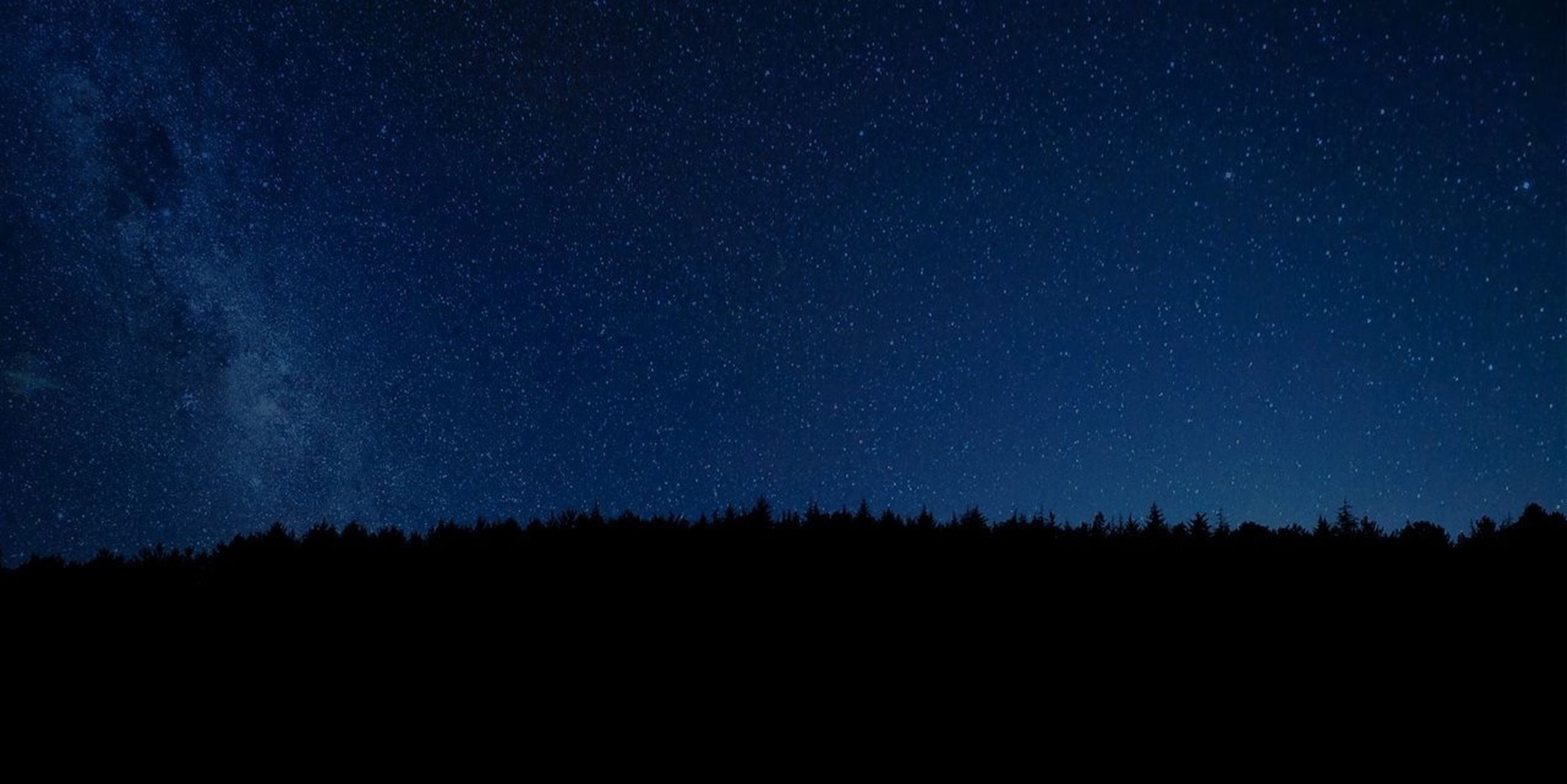 night, star - space, star field, scenics, tranquil scene, beauty in nature, astronomy, tranquility, galaxy, tree, sky, star, space, nature, silhouette, dark, idyllic, infinity, low angle view, milky way