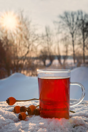 hot tea from hibiscus and rose hip fruits outdoors in the snow, blurry winter landscape with sunset in the background, healthy warming drink against cold and flu, copy space, vertical Beverage Hot Medicine Tea Winter Cold Cold And Flu Day Drink Fruits Health Healthy Herbal Hibiscus Immune System Landscape Medical Outdoors Protection Red Rose Hips Snow Sunset Weather Winter