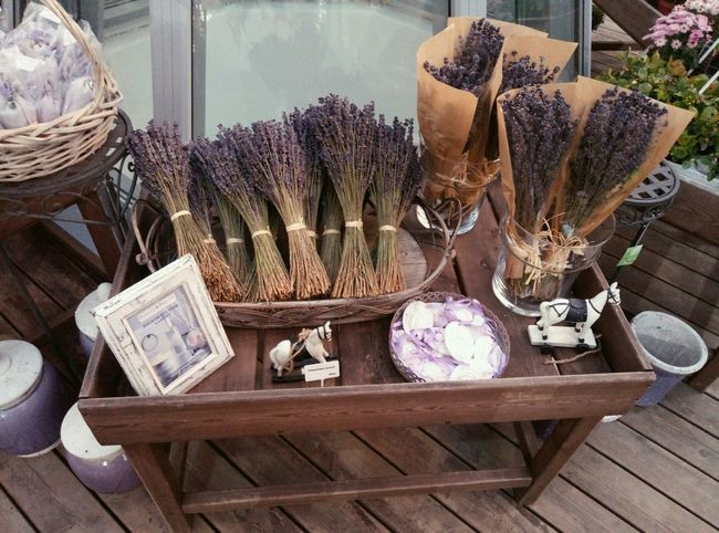 Day Flowers For Sale Lavanda No People Outdoors Store Variation EyeEmNewHere