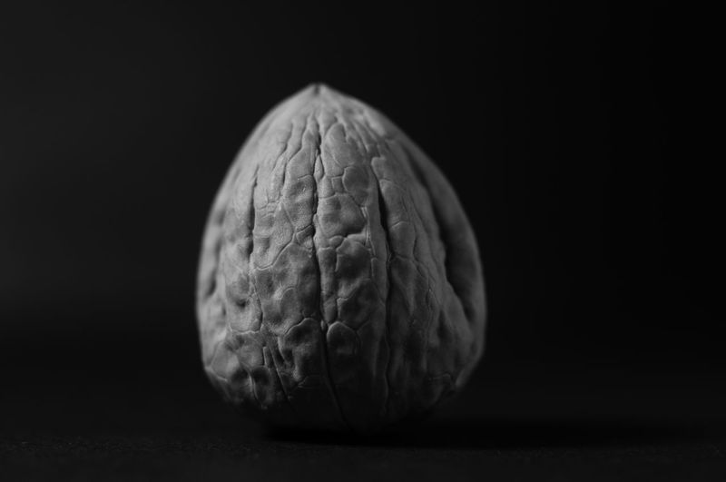 Close-up of leaf on table against black background