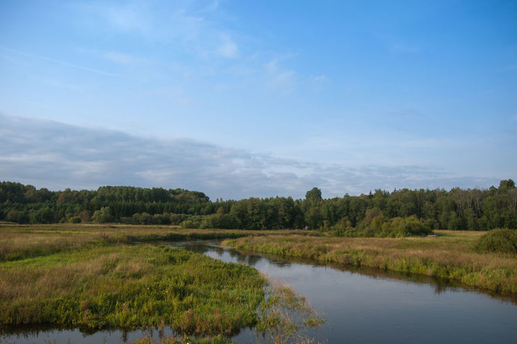 Blue Day Ecosystem  Environment Landscape Landscape_Collection Nature No People Outdoors Tree Water Wet Wetland Pedja River Nature Reserve