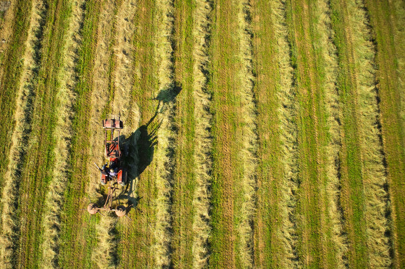 Dry Drone  Top View Field Straw Tractor Hay Dry Grass Landscape Background Natural Rural Summer Agriculture Meadow Land Agriculture Season  Outdoor Feed  Work