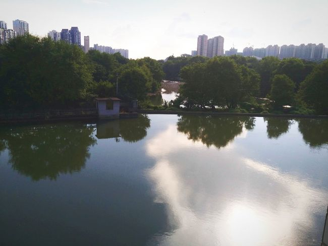 水中的项链 Tree Water City Cityscape Lake Reflection Sky Architecture Building Exterior
