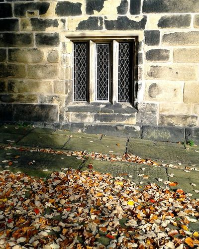 Autumn Leaves Leaded Windows Autumnbeauty Old Churches Medieval Peaceful Place Churchyard Minister Sunlight And Shadow Praising The Lord