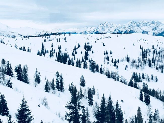 Winter wonderland ❄️ EyeEmNewHere EyeEm Selects Cold Temperature Snow Winter Beauty In Nature Nature Weather Mountain Landscape Sky No People Tree EyeEmNewHere Go Higher