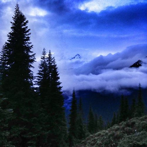 Mt.Rainer!! Mtrainer Upperleftusa Optoutside Rei Gopro Gorpooftheday Msr MountRainerNationalPark