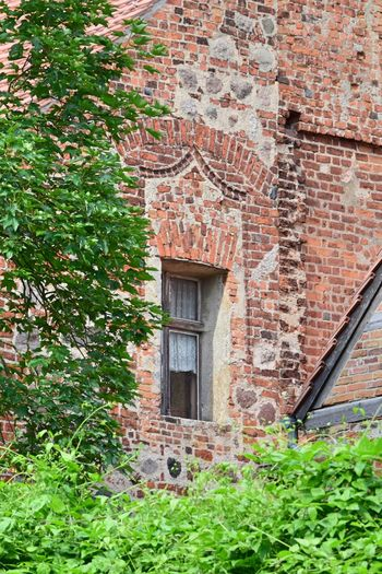 Arch Architecture Badingen (Gransee, Zehdenick) Brick Building Brick Wall Building Exterior Built Structure Day Detail Festes Haus Fieldstone Grass Green Color Historical Building House Ivy Nature No People Old Buildings Outdoors Plant Rural Scene So Called Solid House Tree Window