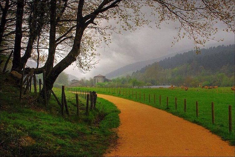 Basque Country Rural Scenes Happy Sunday North Of Spain Spain♥ Natural Beauty
