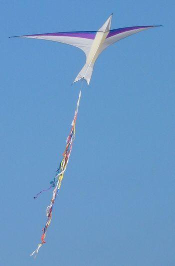 Cachirulo Clear Sky Cometa Comunidad Valenciana Comunitat Valenciana Espana-Spain España España🇪🇸 Kite Malvarrosa Playa De La Malvarrosa Regne De Valencia Reino De Valencia Valencia, Spain