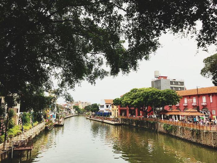 melacca river Melaka Melakariver River Riverside Riverside Photography Tree Architecture Water Outdoors Nature
