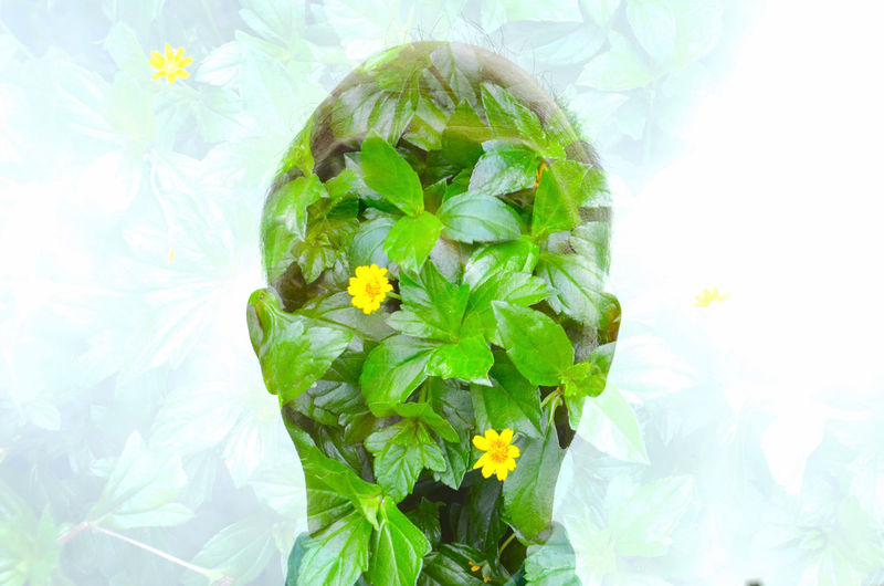 Close-up Face Freshness Green Green Color Growing Heart Leaf Urban Spring Fever The Portraitist - 2016 EyeEm Awards Your Design Story The Essence Of Summer