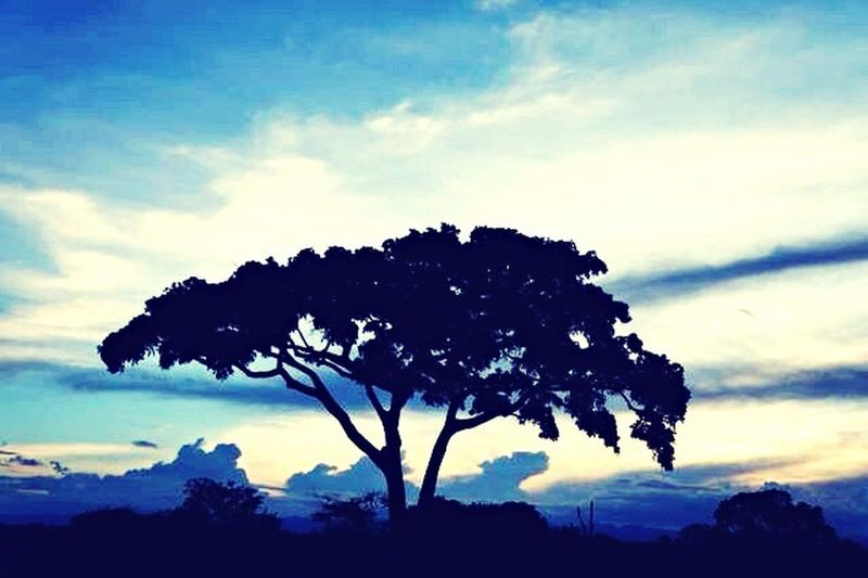 Por do Sol na Chapada Diamantina-Bahia