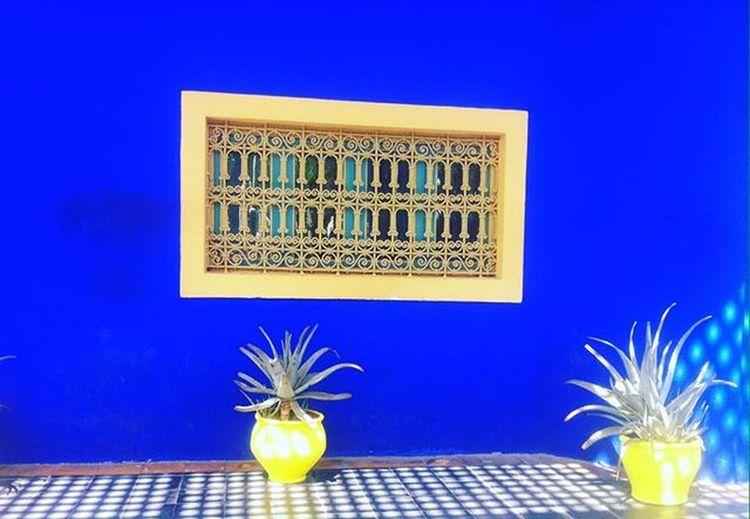 Marrakech Morocco Lejardinmajorelle