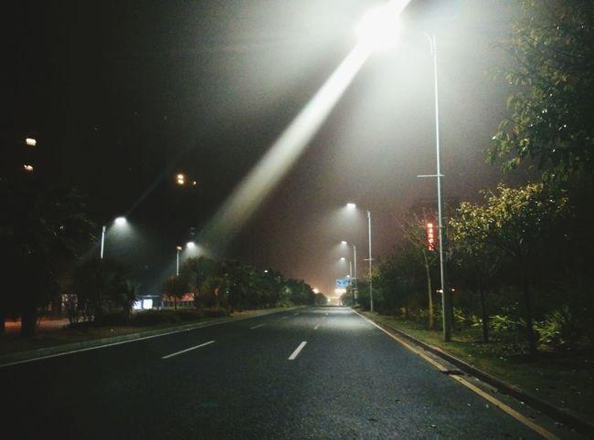 silent avenue