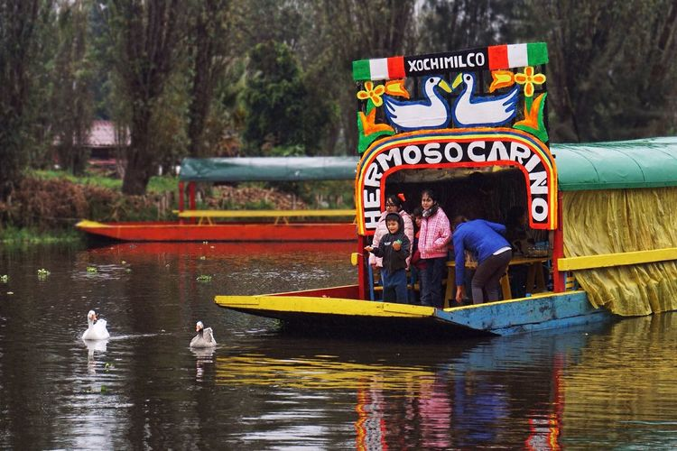 Capture The Moment Xochimilco Mexico Hermoso Cariño Mexico City