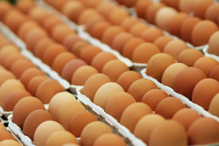 Close-up of eggs for sale at market
