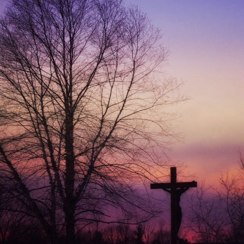 Sunset Cemetery Cross Sillouette Sky Landscape Rural Mood Tree And Sky Tree Purple Night