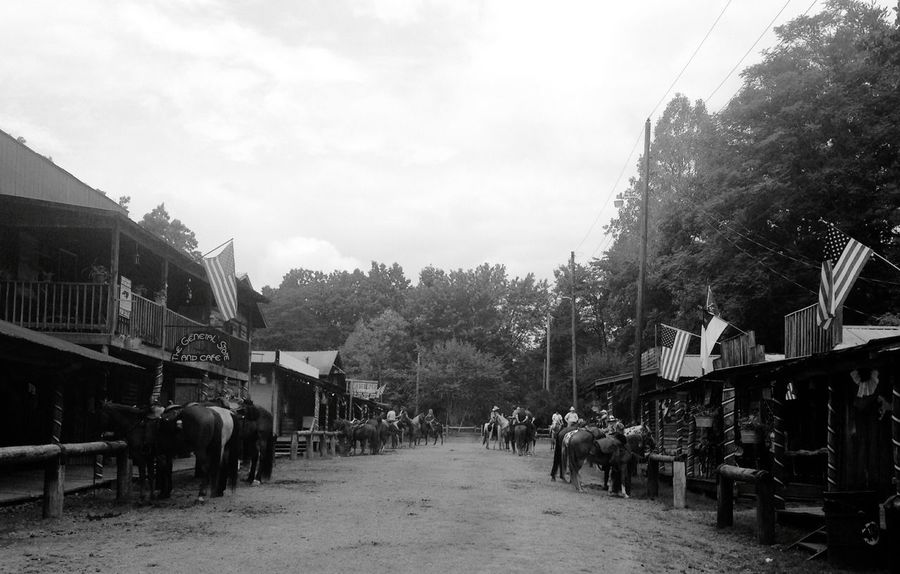Black And White Horses Old West  Small Town Small Town Feel Small Town USA