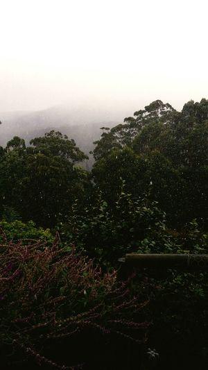Winter in southern Tasmania Taking Photos Hello World