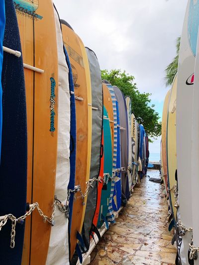 Surfboard locker Waikiki Surfboard Surfboard Lane Surfboard Rack Surfboards EyeEm Selects Sky Day In A Row