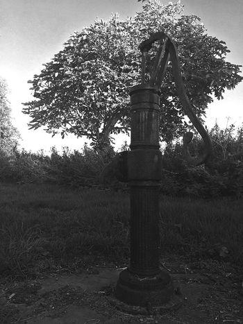 Waterpump Blackandwhite Trees Check This Out Enjoying Life Eye4photography  EyeEm Best Shots