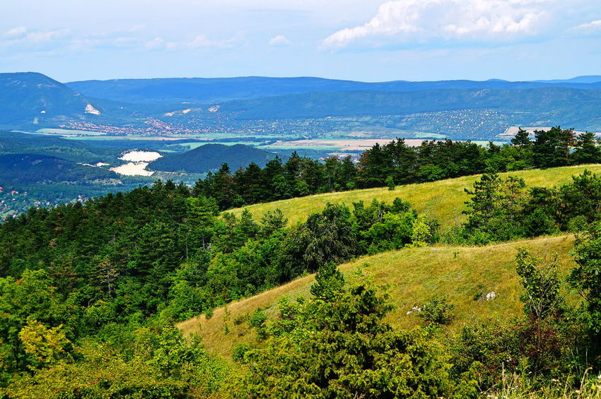 Hills above the Pilis Basin, Pilisszántó is in the distance Basin Nature Reserve Perspective View Beauty In Nature Day Green Color Landscape Mountain Mountain Range Nature No People Outdoors Pilis Pilisszántó Scenics Sea Sky Summer Tranquil Scene Tranquility Tree Water