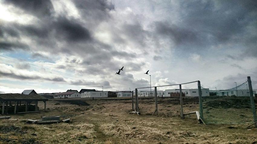 Innri Njarðvik Taking Photos Enjoying Life