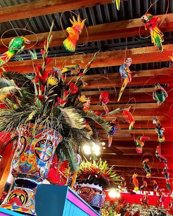 Birds Mexican Decor Red Texmex