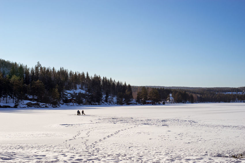 Ice fishing Ice Ice Fishing Recreation  Beauty In Nature Clear Sky Cold Temperature Day Full Length Lake Lake View Landscape Nature Outdoors Scenics Sky Snow Tranquil Scene Tree Winter