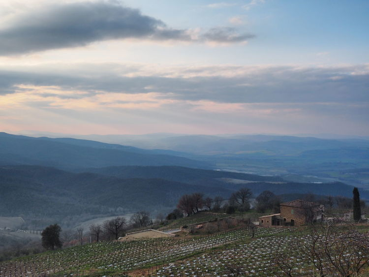 View from Montalcino - Tuscany, Italy Hill Agriculture Mountain View Landscape Montalcino Sunset Pastel Colors Smoothness Vineyard Winemaking Patchwork Landscape Terraced Field