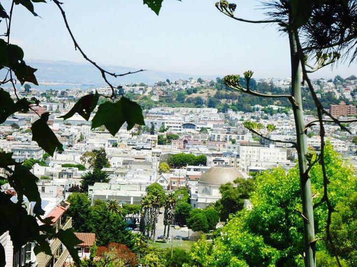 San Francisco San Francisco Beautiful