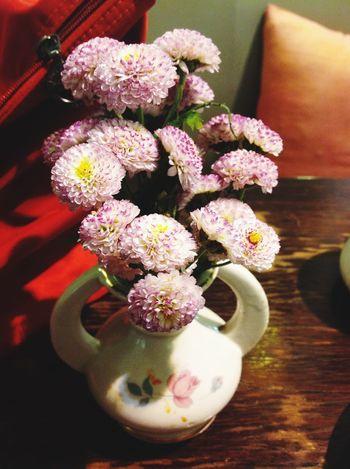 Flowers Nature Coffeecorner Baanpanda
