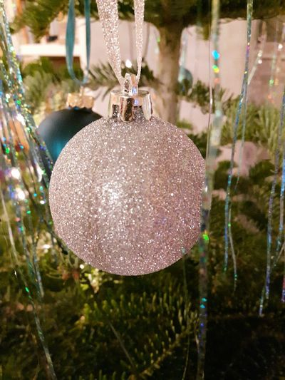 Christmas tree ball Fir Tree Fir Trees Rosa Tinsel  Gongs Christmas Tree Glitter Bauble Baubles Christmas Glass Ball Christmas Tree Christmas Decoration Christmas Ball Christmas Balls Christmas Tree Ball Christmas Tree Balls Christmas No People Hanging Day Tree Outdoors Christmas Decoration Close-up