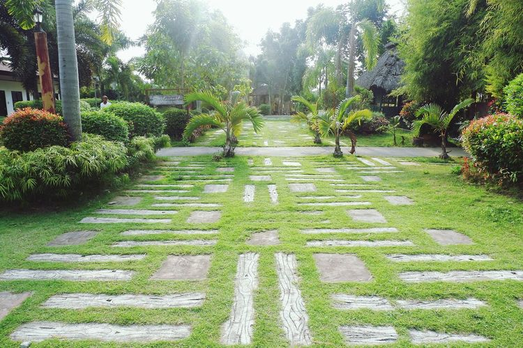 Meeting Place Design Path Pathway Park Vacations House Environment Green Color Vegetation Grass Tree Nature Growth Day Green Color Outdoors No People Beauty In Nature Plant Park - Man Made Space Real People