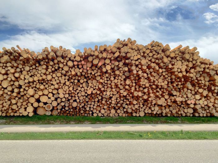 Stack of logs against cloudy sky
