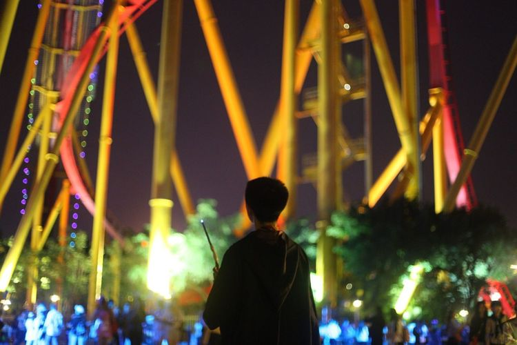 Rear view of man standing at amusement park during night