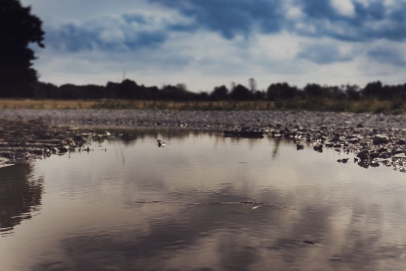 Field Water Sky