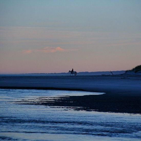 夕阳下,人与马。Greenisland Dunnerstunner NZ