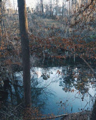 ⬆⬇ VSCO Vscocam TheGreatOutdoors Reflections Neverstopexploring  Exploretocreate Thesouth Southern Augusta GA USA Americana Kinfolk