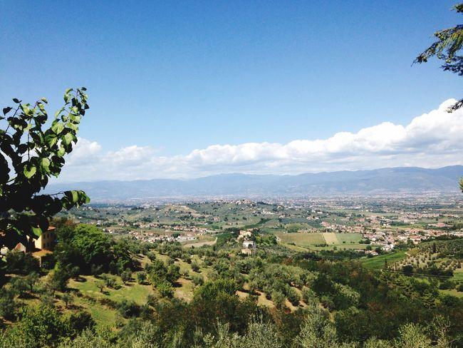 Paesaggio Toscano ; Pranzodelladomenica Mercatino Delle Pulci ,