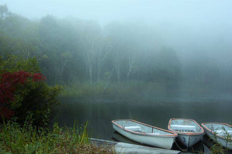 Boats moored in lake during foggy weather